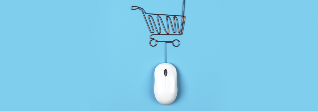 how to build, launch and grow and expand a profitable online eCommerce store